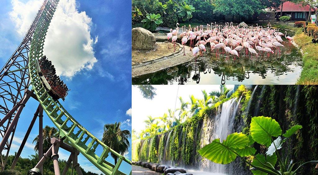 Từ trò chơi cảm giác mạnh đến vườn thú Đài Loan